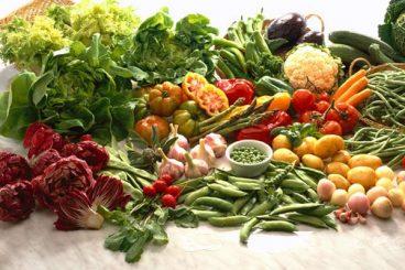 beneficios-dos-alimentos-probioticos